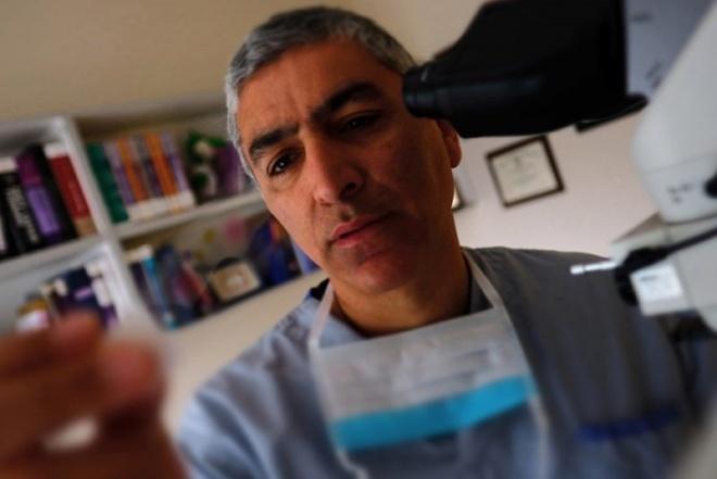 Dr. Reza Alaghehbandan